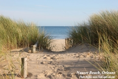 Beach Path-Nauset_Orleans