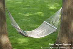 what_a_Day_For_A_daydream