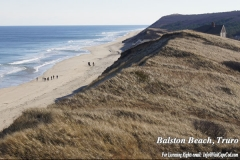 Balston Beach Cliffs