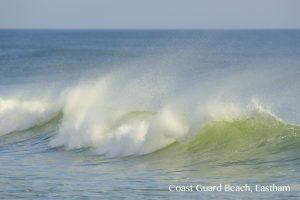 Coast Guard Beach, Eastham copy