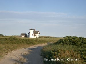 hardings_beach_chatham