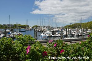 harwich-Saquatucket-Harbor1