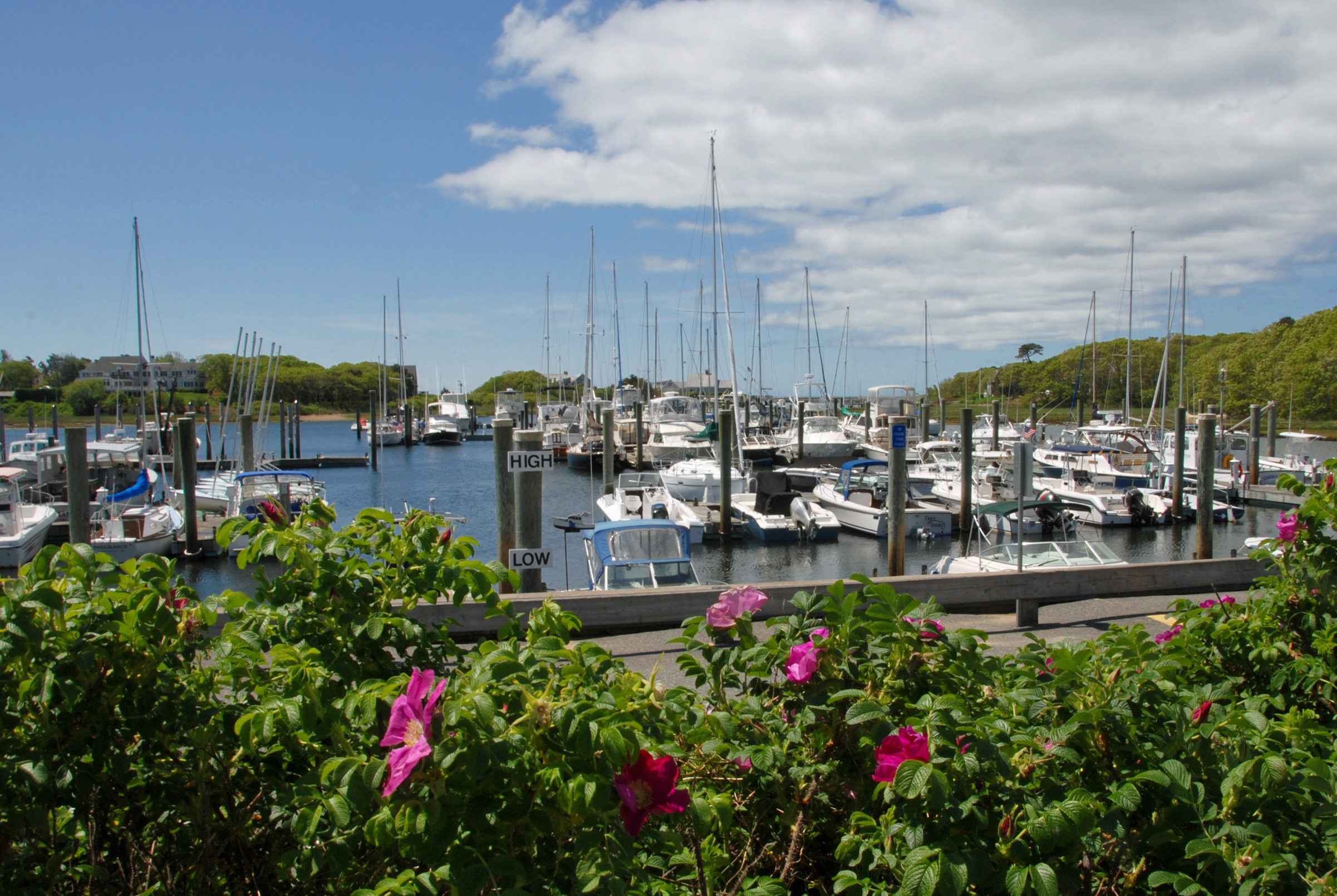 Harwich information cape cod 39 s leading vacation resource - What is a cape cod ...
