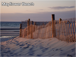mayflowerbeach