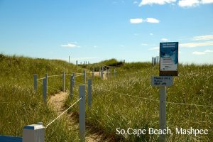 So_Cape_Beach_Mashpee