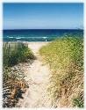 cape_towns_images_sandwich_beach