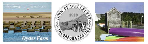 Visit Cape Cod Wellfleet